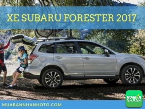 Xe Subaru Forester 2017
